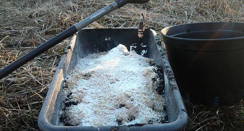 Wstęp Do Uprawy Outdoor Growlikepro