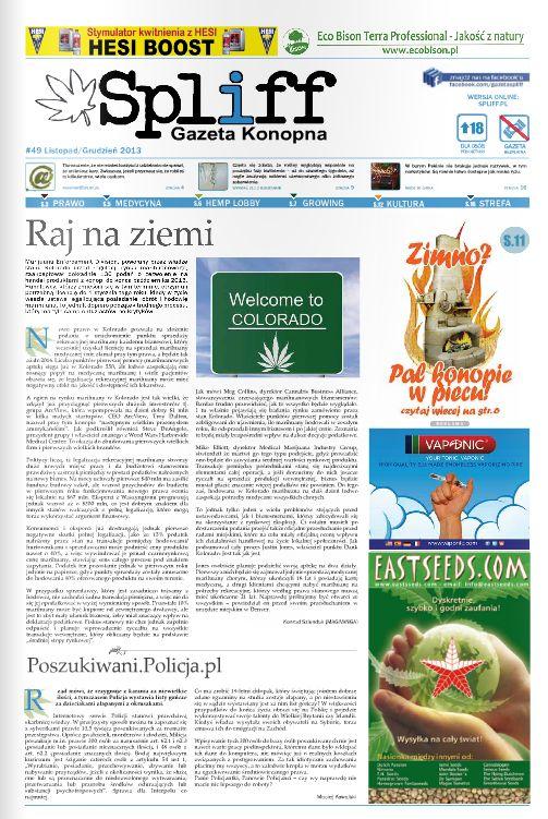 spliff gazeta konopna glp