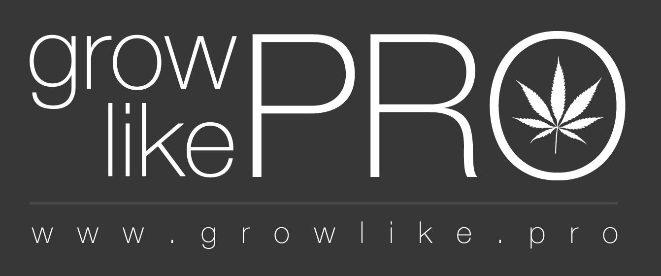glp growlike pro uprawa growbox