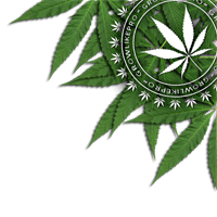 glp growlike pro openseed logo